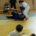 Judo Bad Vöslau Thermenregion Kottingbrunn